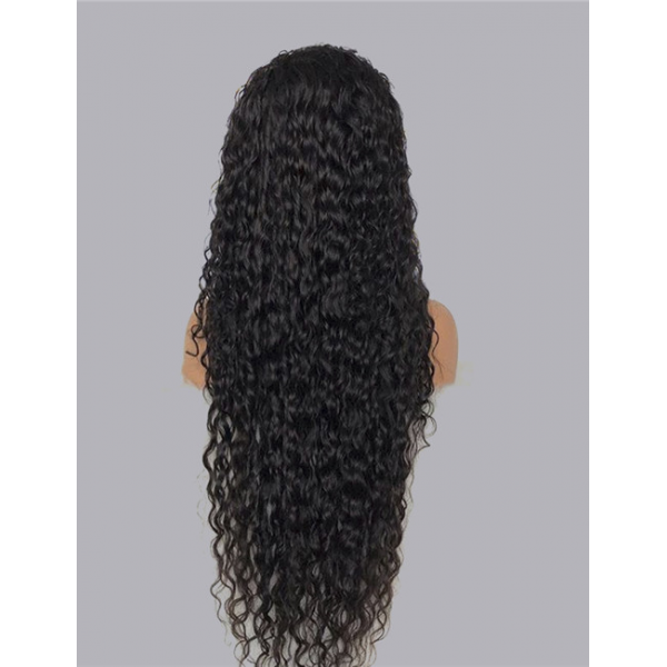 Brazilian Curly Wig Pre Plucked Hairline Human Hair Long Lace Front Wig
